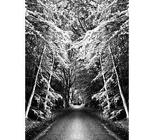 Fantasy Land Photographic Print