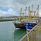 Howth harbour by DES PALMER