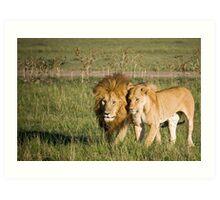 Lions, Masai Mara, Kenya Art Print