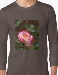 A rose by any other colour T-Shirt