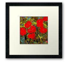 Bright Red Flowers Framed Print