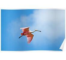 Flying Rosie 2 Poster
