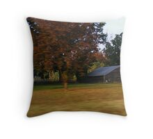 Roadside Barns Throw Pillow