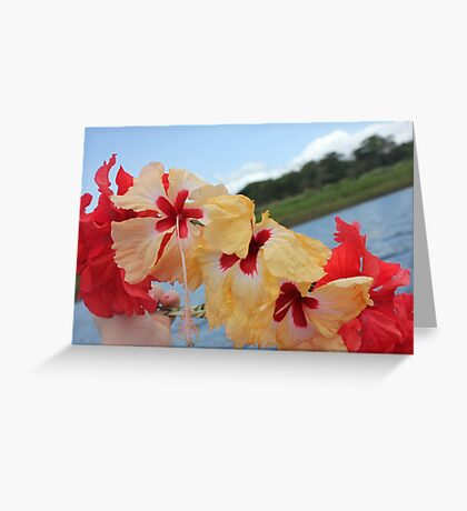 When in Panamà... Greeting Card