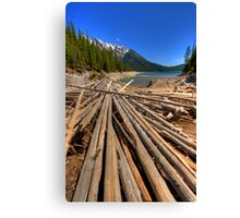 Lake Minnewanka Log Jam Canvas Print