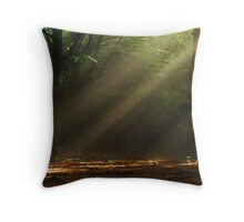 Searching for happiness Throw Pillow