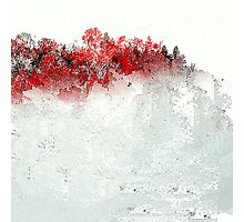Red Landscape Impressions Photographic Print