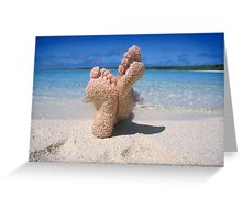 South Pacific Beach Greeting Card