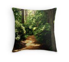 Beaten Path  Throw Pillow
