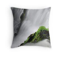 Fulmer Falls Detail Throw Pillow