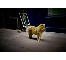 Soho,London(lomo-lca)  Photographic Print