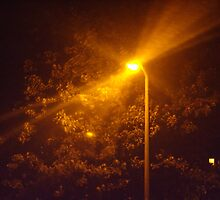 rays of the street light by gemma angus