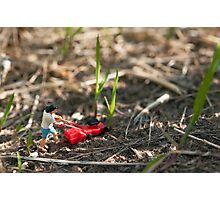 Grass Cutter Photographic Print