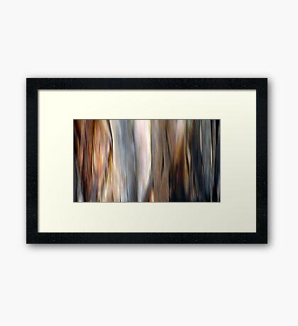 Eucalyptus #4 Framed Print