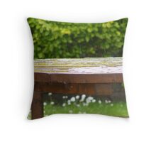 Irish Picnic Throw Pillow