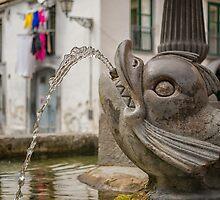 Fontana dei Pesci by Glaspark