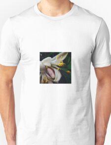 Meyer Lemon Blossoms T-Shirt