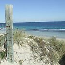 Beach Days by stormygt