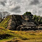 Altun Ha, Belize by Andy Mueller