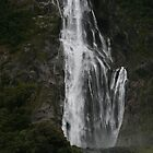 Lively Lady - Milford Sound 2008 by TraceyLea