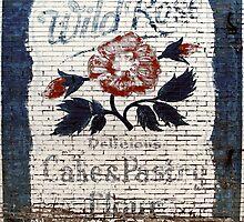 Wild Rose by RobertCharles