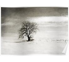 Black and White Winter Tree Poster