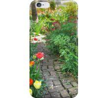Pathway Through the Garden iPhone Case/Skin