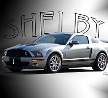 2009 Ford Mustang 'by Shelby' by DaveKoontz