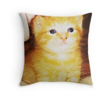 Orange Fluff Throw Pillow