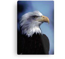 Eagle Bust Metal Print