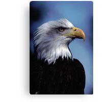 Eagle Bust Canvas Print
