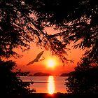 Sunrise Mountain by Gail Bridger