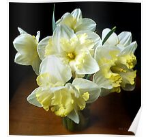 Daffodils in a Jar Poster