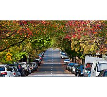 Autumn in Erskineville Photographic Print