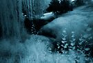 blue day... river of dreams river of tears by Juilee  Pryor