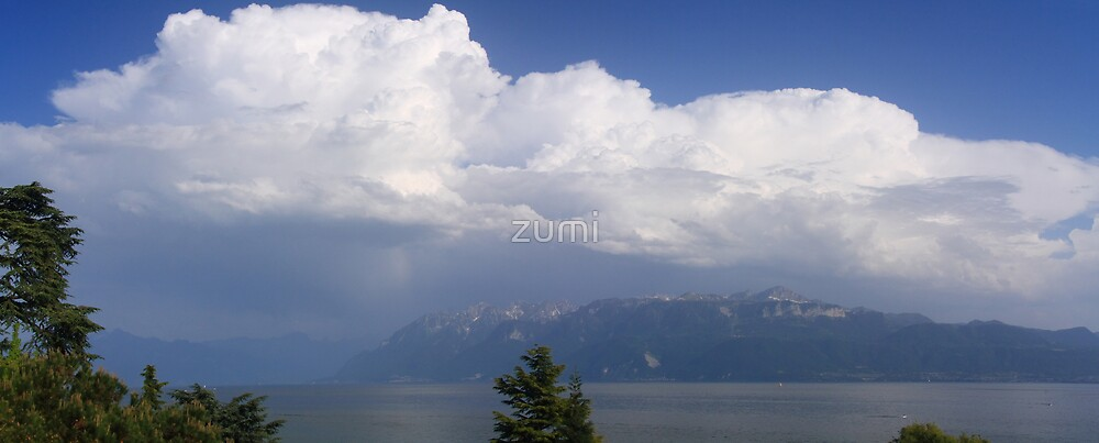 Coming of a storm by zumi
