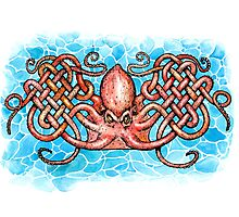 Celtic Octopus Photographic Print