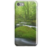 Grobbach Mist iPhone Case/Skin