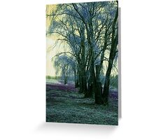 Line of Weeping Willow Trees Greeting Card