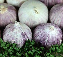Solo Garlic by Zosimus
