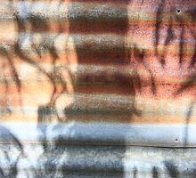 Corrugated eucalyptus by Stephen Denham
