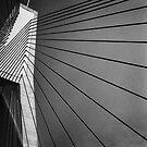Anzac Bridge by Craig Mitchell