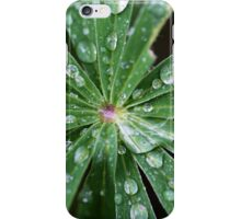Water drops on a leaf. iPhone Case/Skin