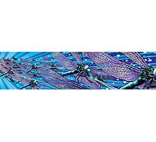 DFb-9000 swarm Photographic Print