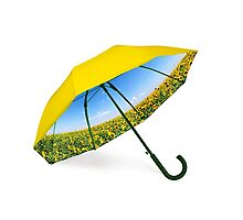 Umbrella with sunflower valley and blue sky view Photographic Print