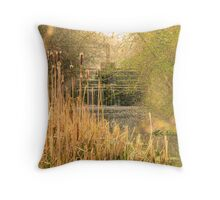 Down by the Canal Throw Pillow