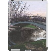 Charles River Esplanade 4 iPad Case/Skin