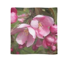 Crab Apple Blooms Scarf