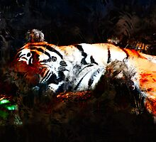 CAT NAP ... tiger by DARREL NEAVES
