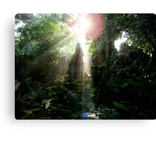 Penetrating the Cagey Canopy Canvas Print
